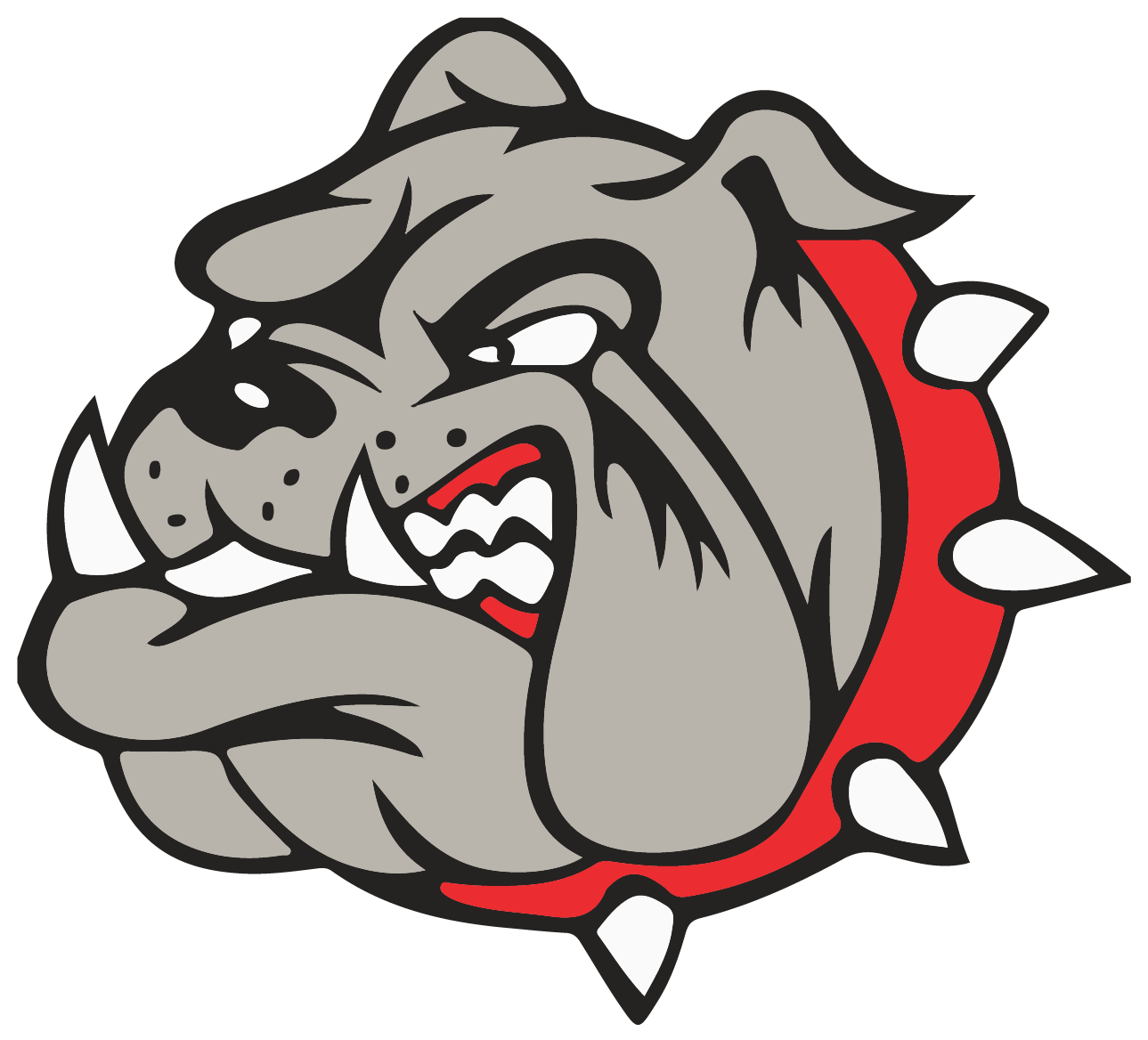 Bedford Bulldogs Soccer